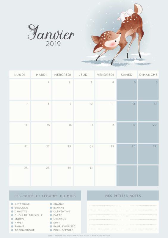 Calendrier A Imprimer Janvier 2019.Calendrier De Janvier 2019 A Imprimer Plume Picoti