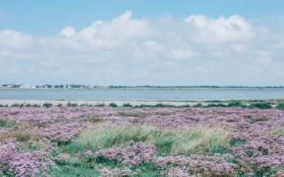 Saint Valéry sur Somme et la Baie de Somme